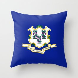 State Flag of Connecticut Throw Pillow
