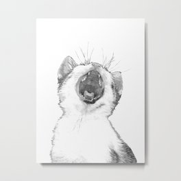 Black and White Sleepy Kitten Metal Print