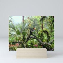 Singapore Botanical Garden 2 Mini Art Print
