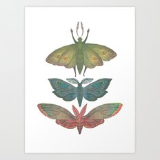 Saturn Moths Art Print
