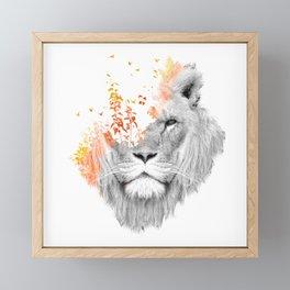 If I roar (The King Lion) Framed Mini Art Print