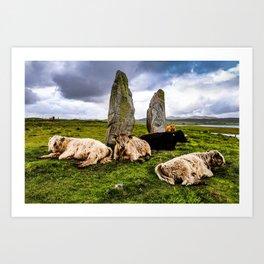 Highland Cows (Isle of Skye, Scotland) Art Print