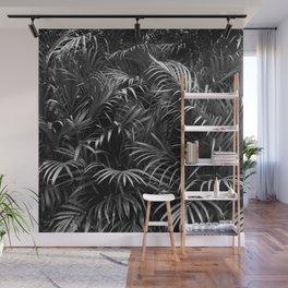 Palm Leaves Art Tropical Plants Rainforest Photography Jungle Wall Mural