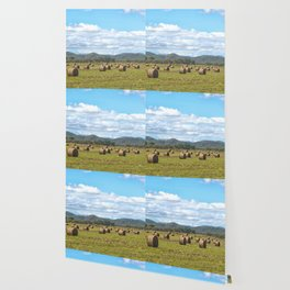 Hay bales on a sunny day Wallpaper
