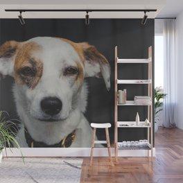 Dog by Erin Wilson Wall Mural