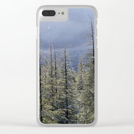 Snowing and sunny.Color.  At the same time at the mountains Clear iPhone Case