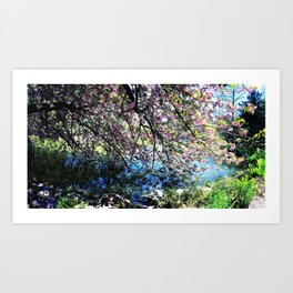 Walk Along the Cherry Blossoms Art Print
