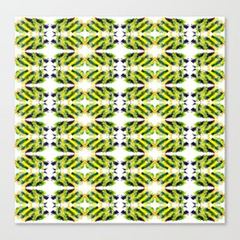 ethno kaleidoscope art smears Canvas Print
