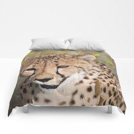 Cheeta Head looking Comforters