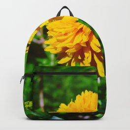 Goldquelle Coneflower Backpack