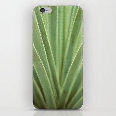 Agave no. 1 iPhone & iPod Skin