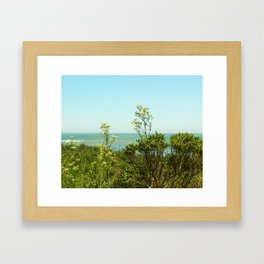 California Coast Floral I Framed Art Print