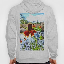 Cone Flower and Pond Hoody