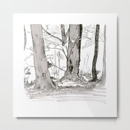 Balmore Park Landscapes - day 18 Metal Print