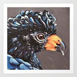 Wattled Cuassow Art Print