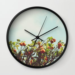 Florida Orange Grove Wall Clock