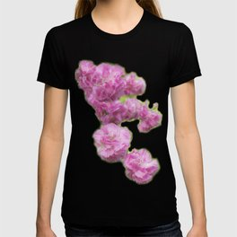 Can't Get Enough of Pinks! T-shirt