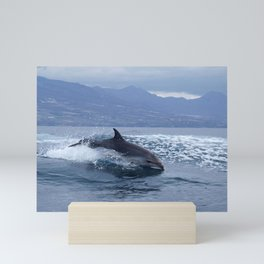 Wild and free bottlenose dolphin Mini Art Print