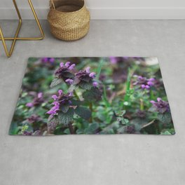 catmint Rug