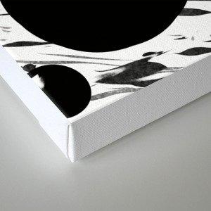 Compress Canvas Print
