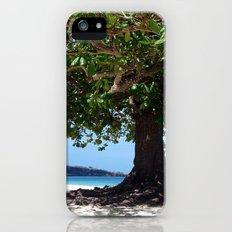 beach tree tropic iPhone (5, 5s) Slim Case