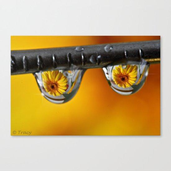 Sunshine Drops Canvas Print