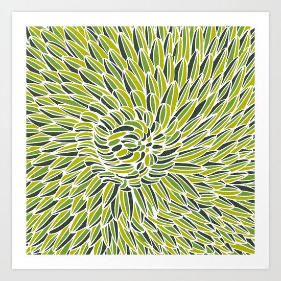 Green Chrysanthemum  Art Print