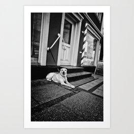 Dog in Danmark Art Print