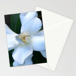 Gardenia Stationery Cards