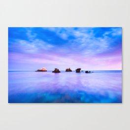 rocks and sea Canvas Print
