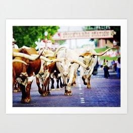 Texas Stockyards Art Print