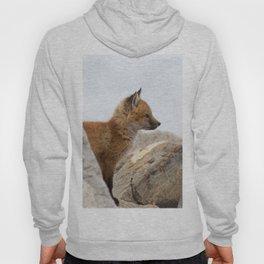 Watercolor Fox, Red Fox 41, Union Reservoir, Boulder Hoody