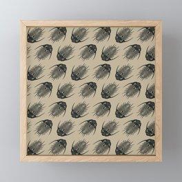 Trilobite Fossils Framed Mini Art Print