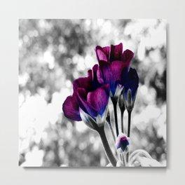 Magenta Blue Flowers Pop of Color Metal Print