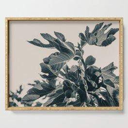 Fig Leaf Tree #society6 #decor #buyart #kirovair Serving Tray