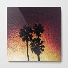 California Views Metal Print