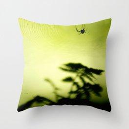 weave me a web Throw Pillow
