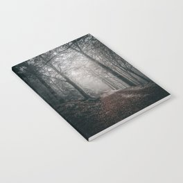 Forest path Notebook