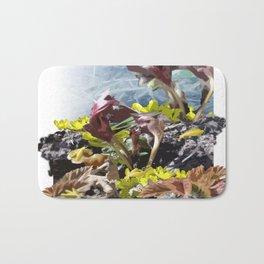 Springbugs Bath Mat