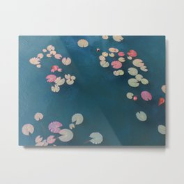Pond's surface Metal Print