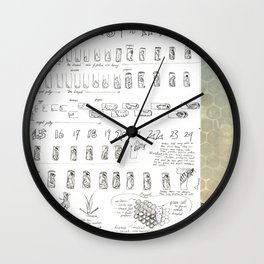 Stages of the Honey Bee Wall Clock