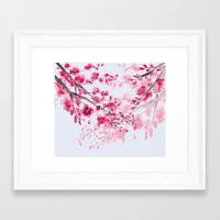 cherry blossoms Framed Art Prints featuring Cherry Blossoms  by Catherine Holcombe