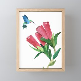 Humming Bird Flowers Framed Mini Art Print