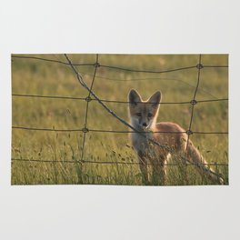 Red Fox Kit Rug