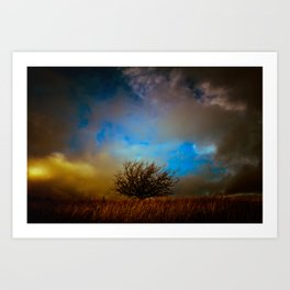 English landscape with lone tree, UK Art Print