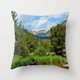 Bowen Mountain 2018 Study 3 Throw Pillow