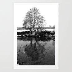 A Lone Winters Tree Art Print