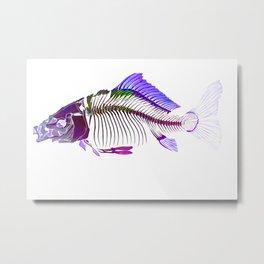Dead Fish Bones Skeleton in Blue Metal Print
