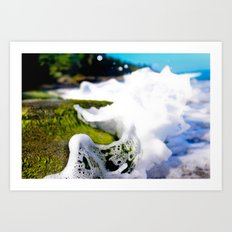 Wave Splash on Mossy Rock Art Print