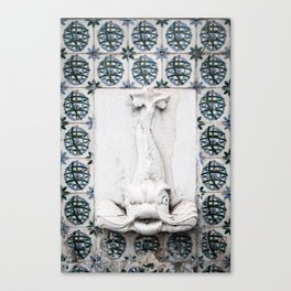 Fountain Fish Canvas Print